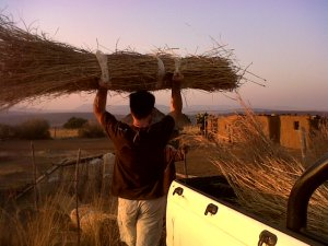 Taking Thatch to Phumlani's uncle