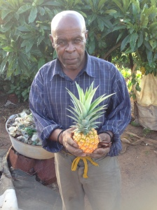 Mkhulu grew this pineapple in his home garden.