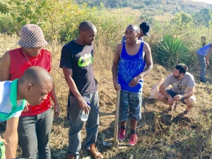 Helping Mkhulu dig sweet potatoes